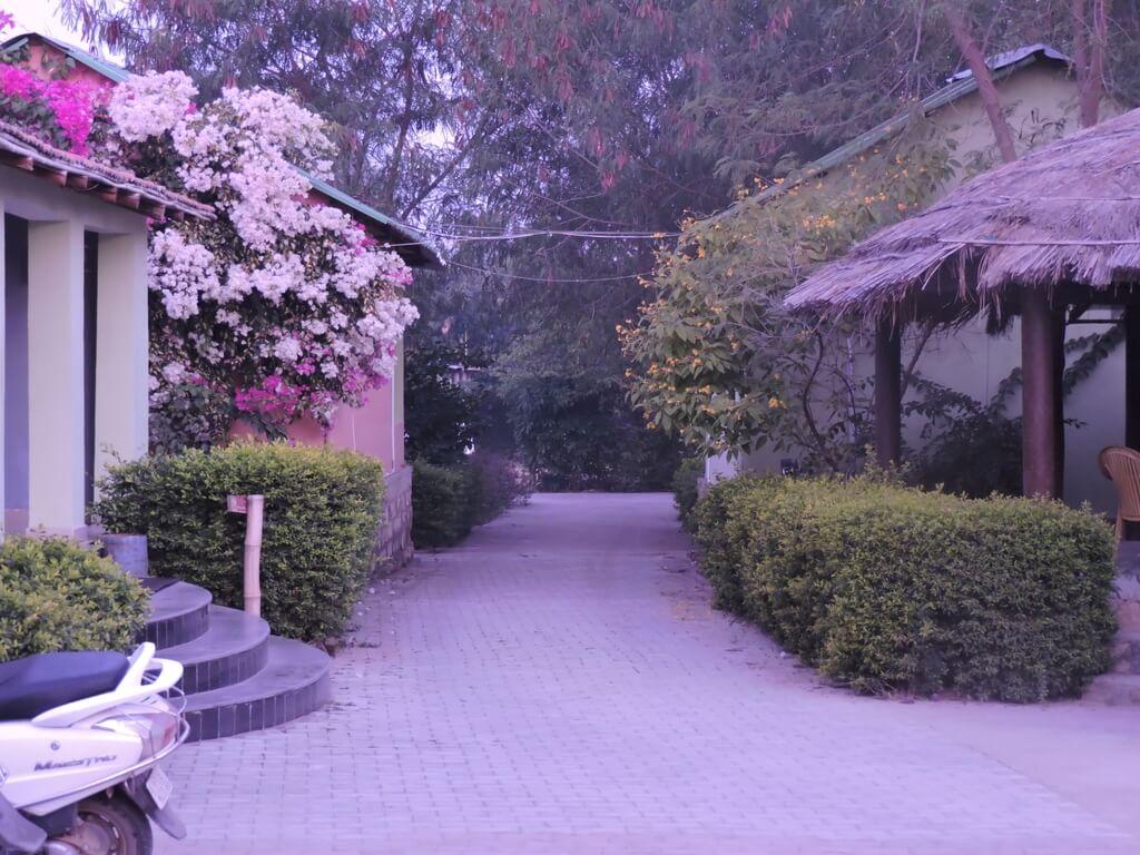 K Raj Tiger Resort Near Madla Gate, Panna tiger reserve