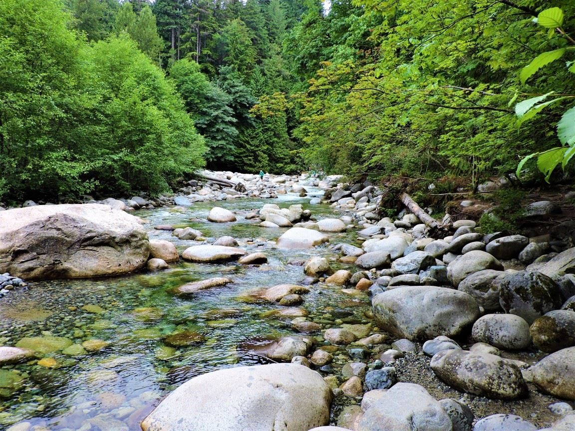 Lynn valley river