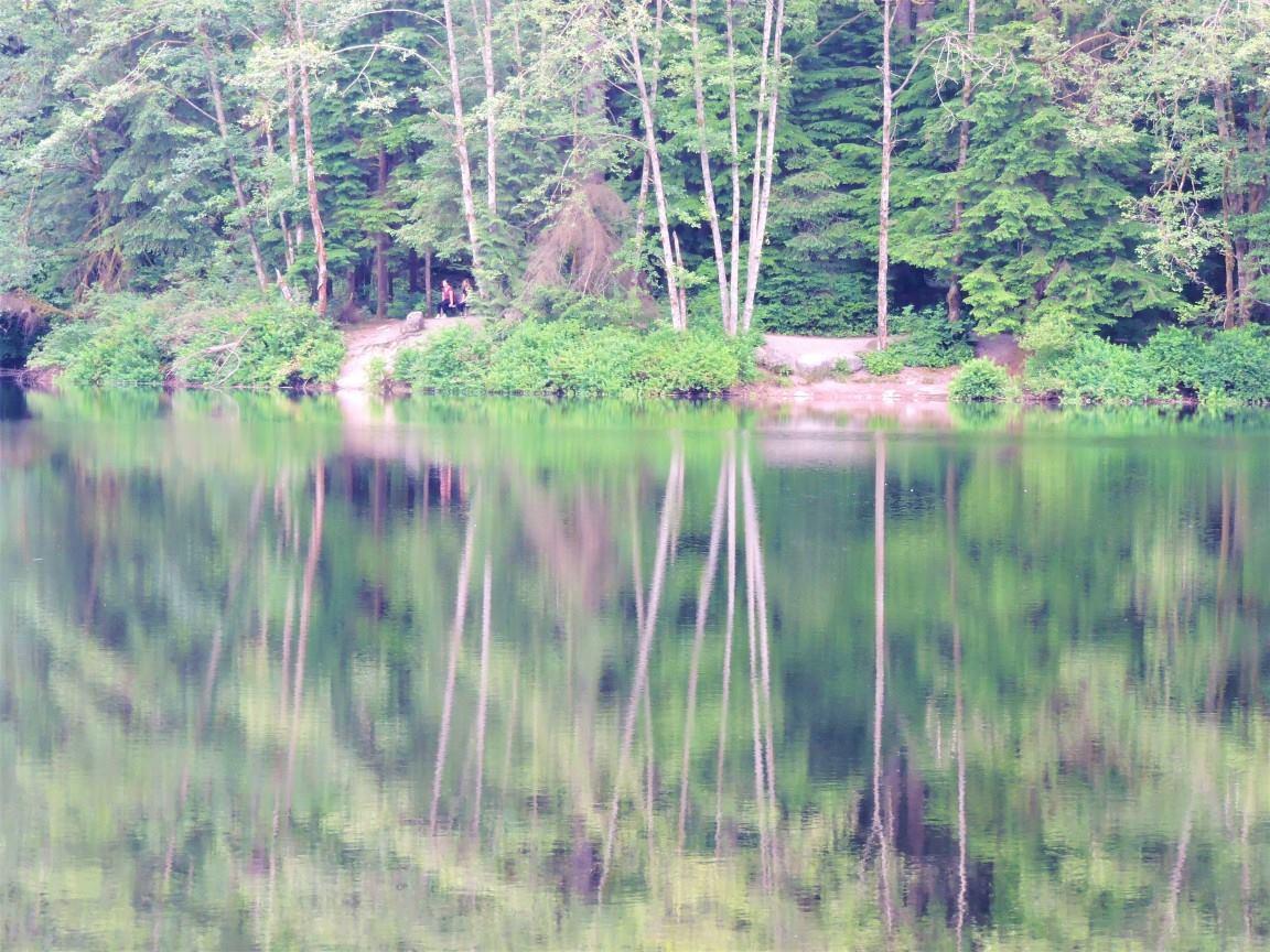 rice lake (1)