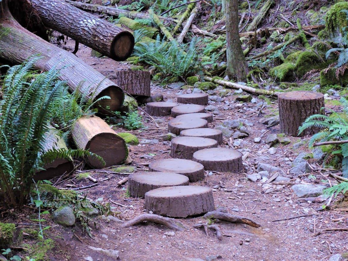 Cypress Mountain Hike