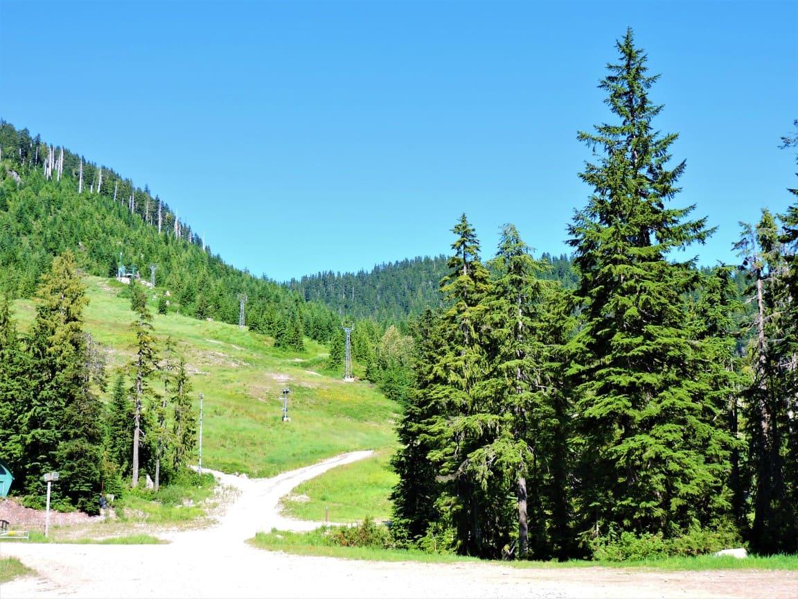 Skiing area near Cypress mountain parking area