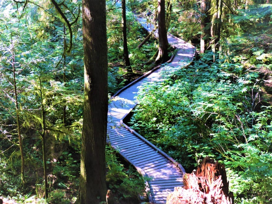 Wooden hike trail on the way to Norvan Falls