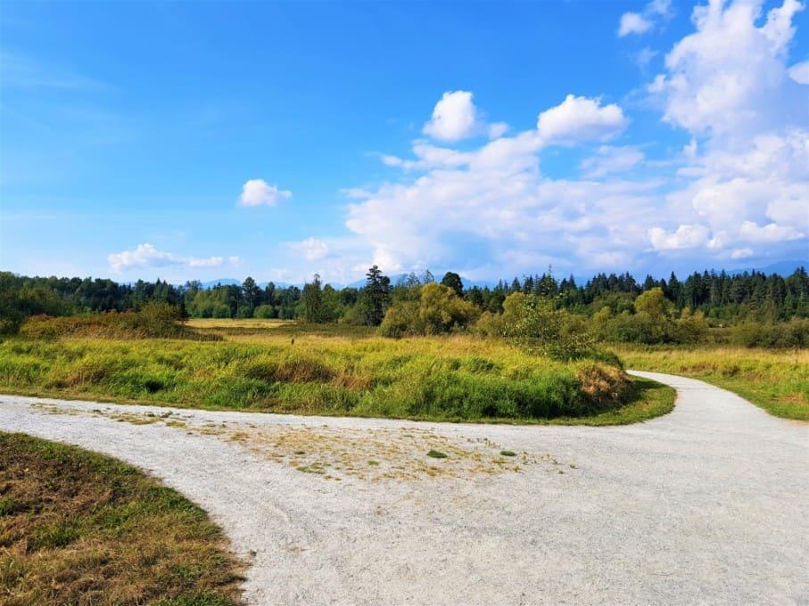 Deer Lake Park Hillside Lands