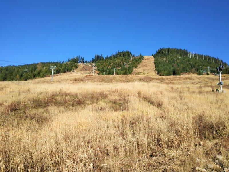 Cypress mountain in november