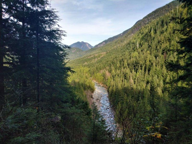 gold creek view