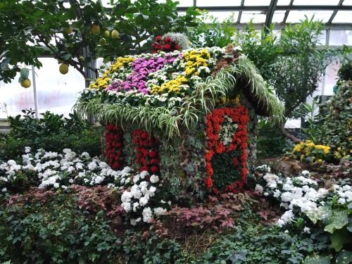 Allan Gardens Toronto Winter Flower Show (1)