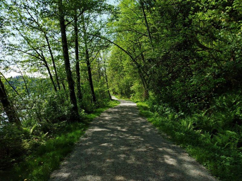 Railway Trail Near Hayward Lake