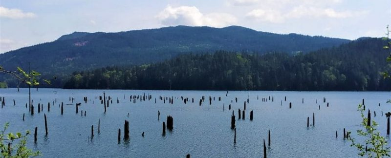 Wooden beats in Hayward Lake