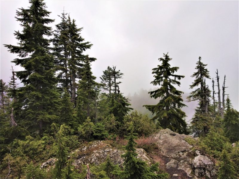 Mount fromme peak on a cloudy day
