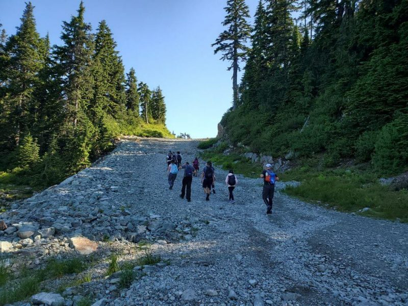 Wide gravel path Mount Seymour hike