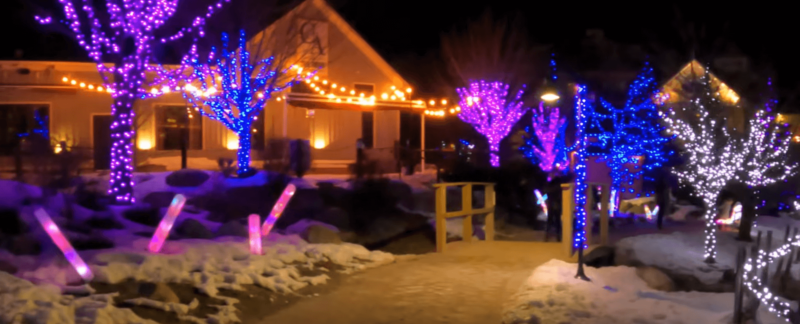Blue Mountain Village Night Walking Tour in Winter