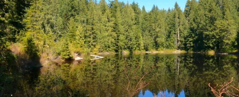 Lost-Lake-Blue-Gentian-Lake-Brothers-creek-loop-West-Van-3-56-screenshot