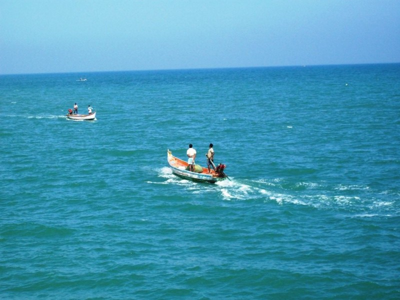 Fishermen from Pondicherry harbour