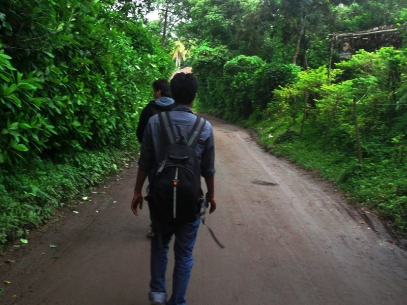 On the way to Dubare elephant forest